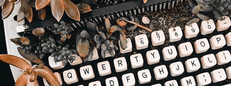 Newsletters : ce que l'on a appris après 2 saisons d'emailings
